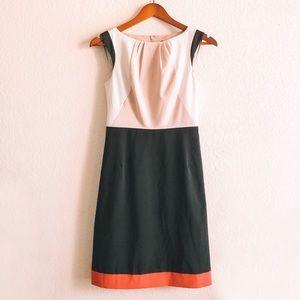 Anne Taylor Colorblock Dress